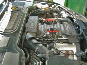 Instalacja gazowa ze sterownikiem Stag 300 Premium w aucie Audi A8 4.2 Quatro 2004 rok